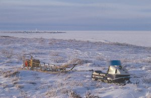 The old Evinrude snowmachine and Alex's sled.