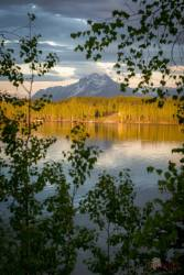 Summer Peak A view of Pioneer Peak from across Lake Lucille in Wasilla, AK Photographer: Cecil Sanders / LFM www.cecilsandersphotography.com