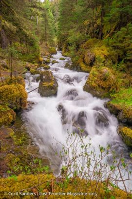 Virgin Creek, Girdwood, AK Cecil Sanders Photography www.cecilsandersphotography.com