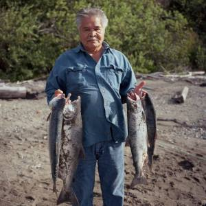 Native Village of Tyonek President Al Goozmer holding salmon caught while subsistence setnetting near the mouth of the Chuitna River. Credit: Sara Quinn