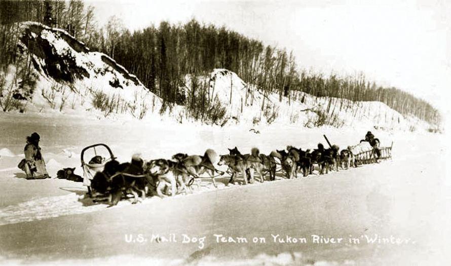 US_Mail_dog_team_Yukon_River